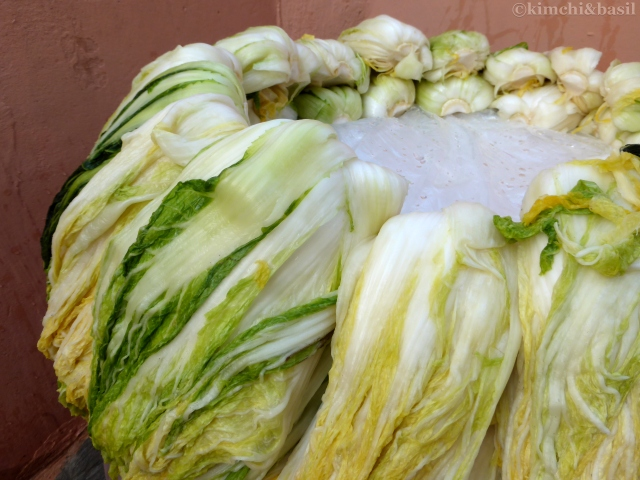 cabbages to dry