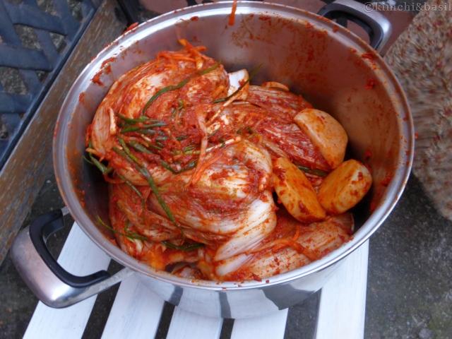 kimchi finshed
