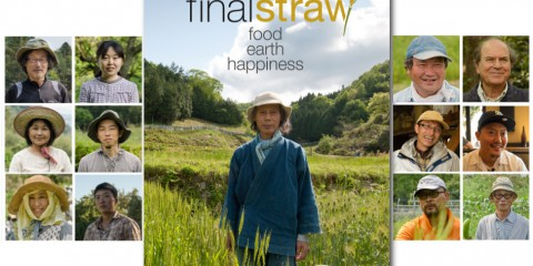 final straw poster